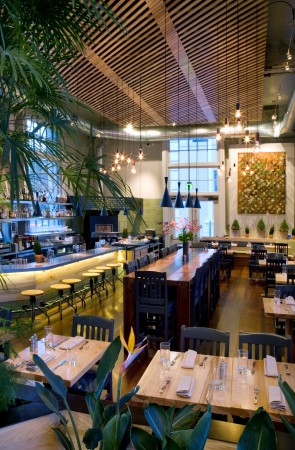 "The Plant: Cafe Organic. Pier 3, San Francisco, CA. occupies two historic waterfront buildings. The 1400-square-foot dining space, originally built in the early 1900s, features 18-foot ceilings, exposed timber structure, and 16-foot-high casement windows that admit natural light and stunning views of the water. The Plant is one of the ""greenest"" restaurants in San Francisco, and is one of the few in the country with a rooftop solar PV system for on-site, electrical energy production, which is used to power much of the kitchen."